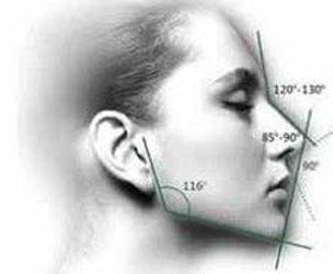 你的脸型够标准吗?快用马夸特面具测一测