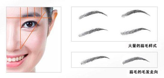 眉毛种植后毛发的生长周期久吗