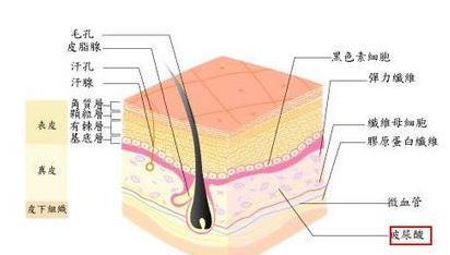 玻尿酸除皱后效果可以保持多久呢