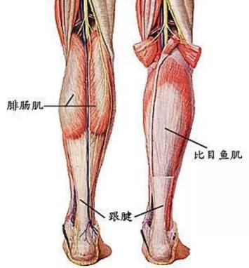 二大瘦腿神器任你挑,你会Pick哪一个
