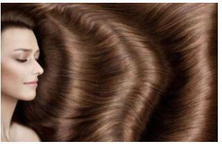 植发可不可以使用体毛
