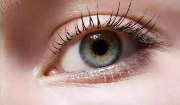 广州荔枝湾整形外科揭秘【眼部整形】眼综合项目包括哪些?