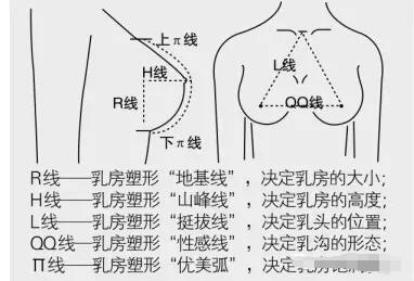 【医美科普】隆胸手术必须遵守的黄金五线标准