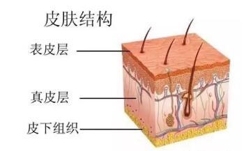 你怎会长痘痘?是水油不平衡?是上火?还是内分泌