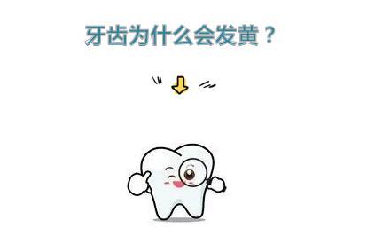 少年齿如编贝,如今却是一口黄牙!这是为什么