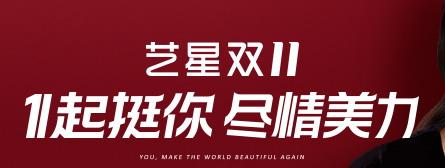 重庆艺星11月双11优惠
